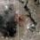 Настарых снимках Луны обнаружили загадочные металлические сооружения