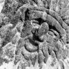 Славянские идолы на пляже Америки